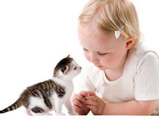 Алергия към котка кожа
