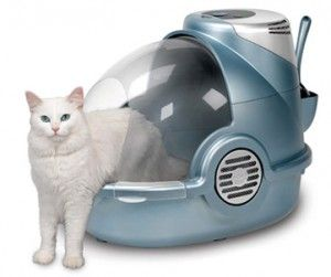Тоалетна за котки