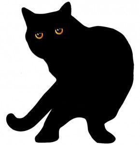 Черен цвят на британските котки