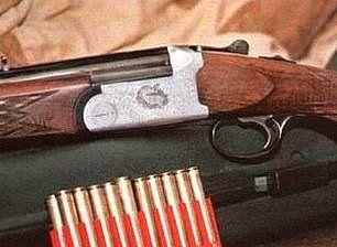 Koja je razlika u odnosu na pištolj mlaznice