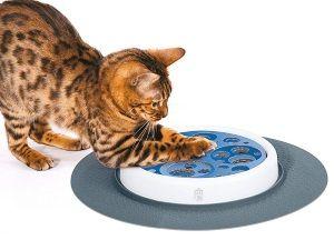 Využitie interaktívne hračky pre mačky