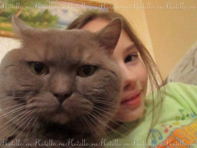 Jack a jej mačka Stepan