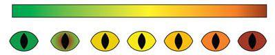Správna farba očí u mačiek