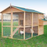 Coteț cu Aviary construit