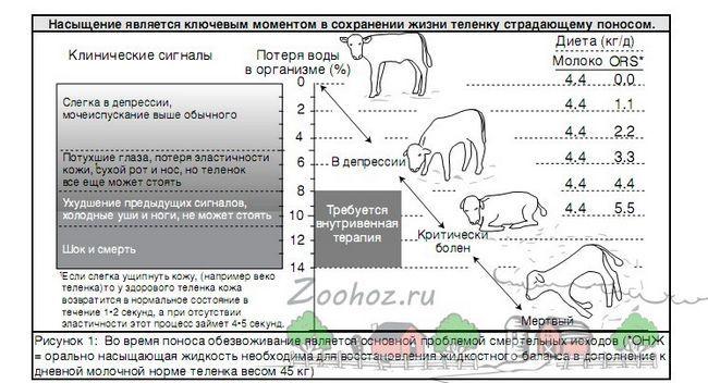 Tabela dijareje