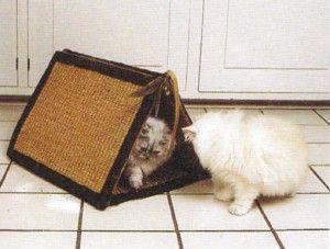 Къща котка със собствените си ръце