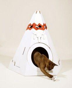 Къща котка