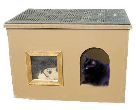 Kuća od kartona mačka
