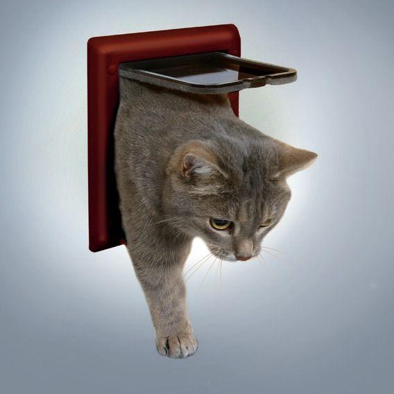Врата за котки