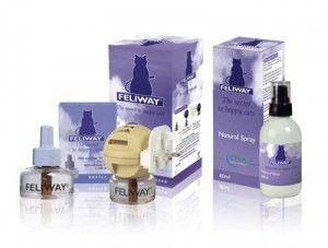Feliway ® - feromon pentru pisici
