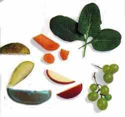 Fructe, legume și furaje verzi