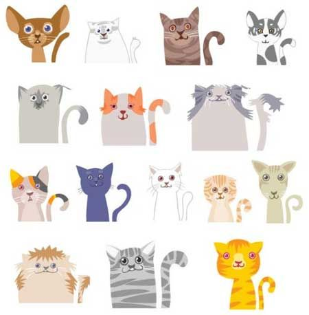 pisici În cazul în care sunt formate culori