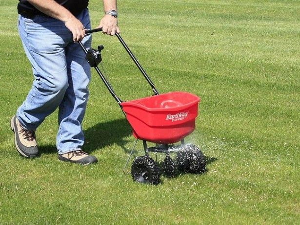 hnojivo fotografie trávnik