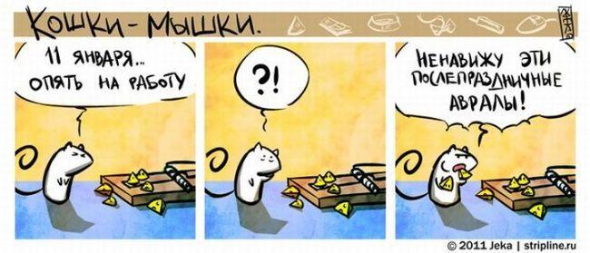 Prietenie Cat lins bot de câine. fotografie