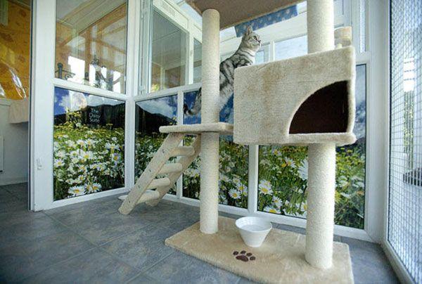 Hotel za mačke