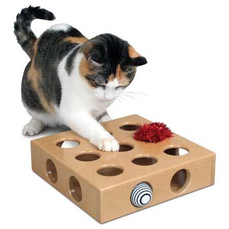 Играчки за котки със собствените си ръце