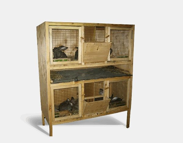 Colivia cu iepurii pe două etaje