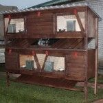 familie casa de iepure portabil de patru