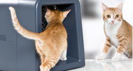 Krmítko pre mačky