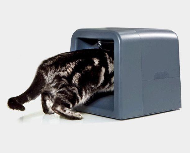 Elektronický podávač pre mačky