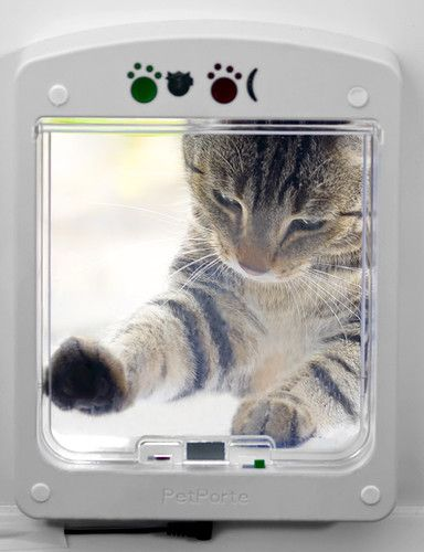 Електронен врата за котки