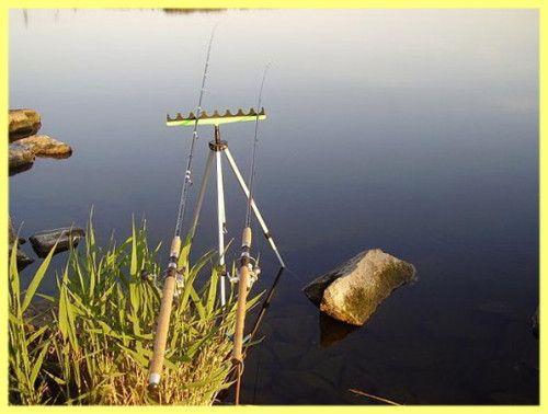 lov švába na plaváku tyči