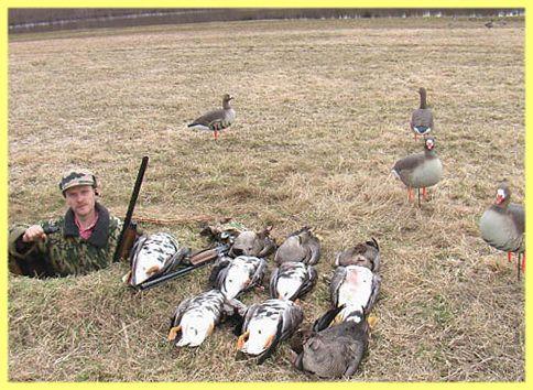 Prístrešok pre lov husi