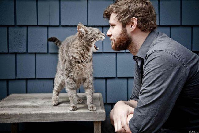 Ako sa spriateliť s mačkou milencom?