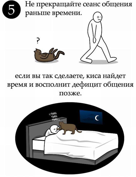 Ako mŕtvice mačku