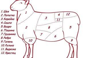 Ako porážku a mäsiar ovce