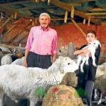 O familie de agricultori în strungă caramida