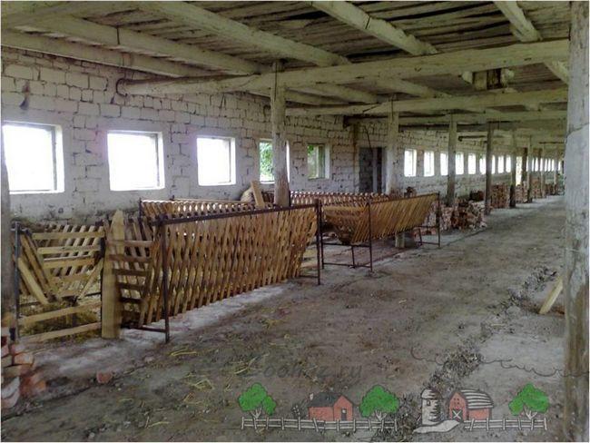 Troacă pentru ovine într-un hambar neterminat