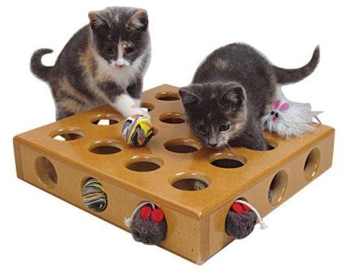 hračky pre mačiatko