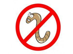 Použitie tabliet pre prevenciu červov