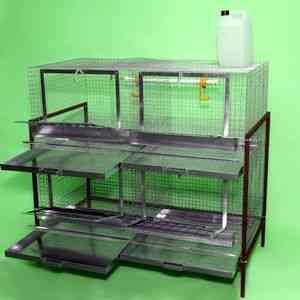 baterii celulare fabricate în performanță trei, patru și cinci niveluri. Pentru numărul maxim de păsări loc, în funcție de mărimea ...