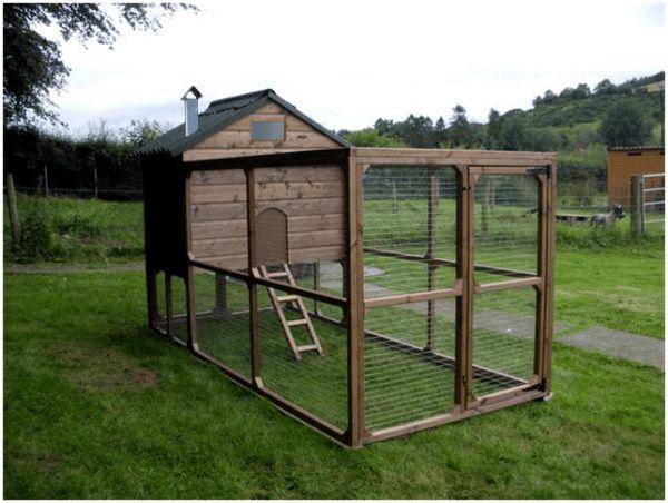 Ako sa stavia ohrady a výbeh pre vlastné kurčatá: krok za krokom sprievodcu