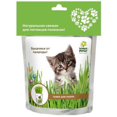 Траву для животных можно приобрести в зоомагазине