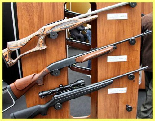 Šta je puška lovac izabrati početnik