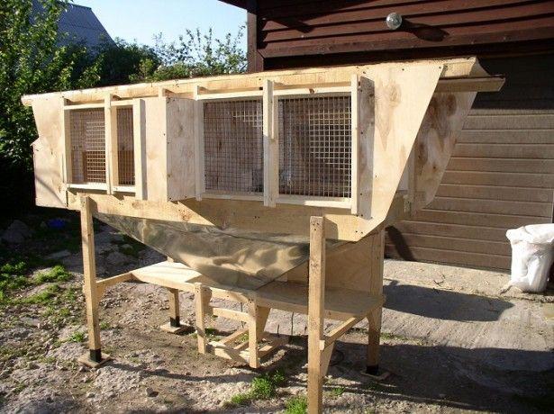Pe celulele foto pentru iepuri Zolotukhin