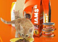 Iams krmivo pre mačky