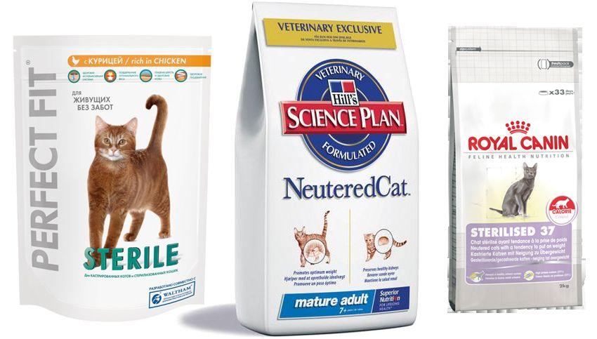 Храна за кастрирани котки