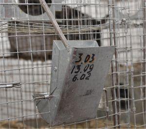 Troacă pentru chinchilla Ucraina, prețul de a cumpăra pe Allbiz