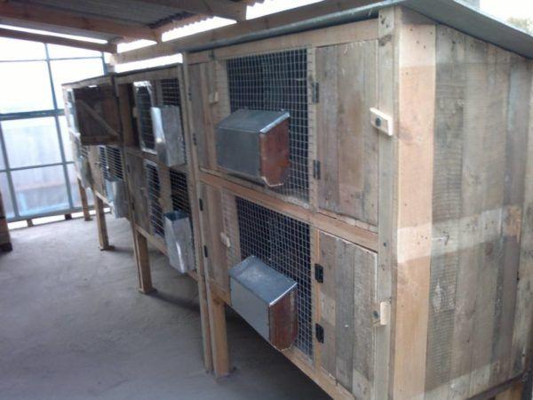 celule Zolotukhin cu containere de basculare pentru produse alimentare