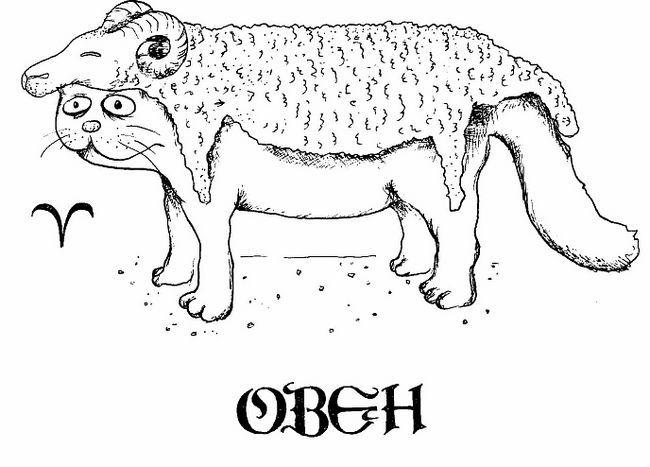 Mačacie horoskop: ako hviezdy ovplyvňujú charakter domáceho maznáčika