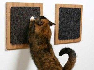 Škrabanie príspevky na stene