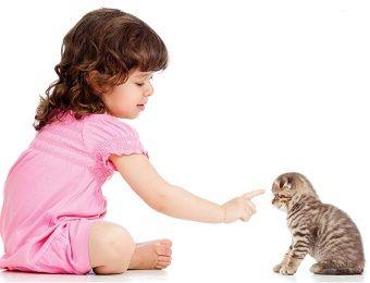Mačka a deti