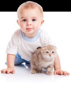 Котка и бебе