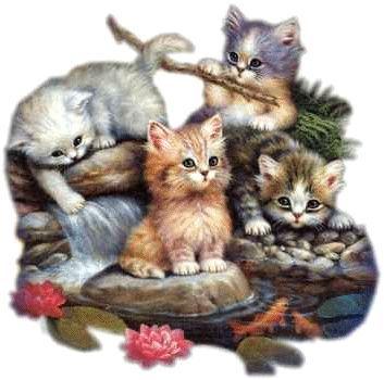 Cat obrázky pre deti ťahané 1