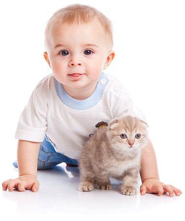 Котки и деца