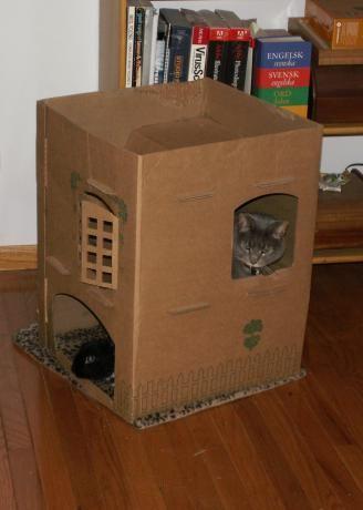 Chata pre mačku z krabice